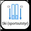 Ski (sportsutstyr)